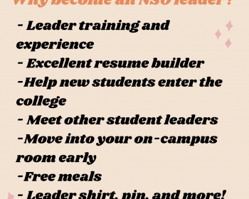 Why become an NSO leader?