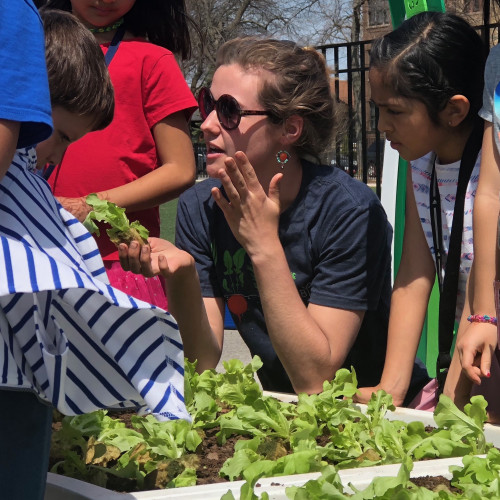 Katherine Jernigan working with students in a school garden in Chicago.