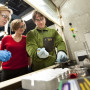 Anne Bentley guides students working in a lab.